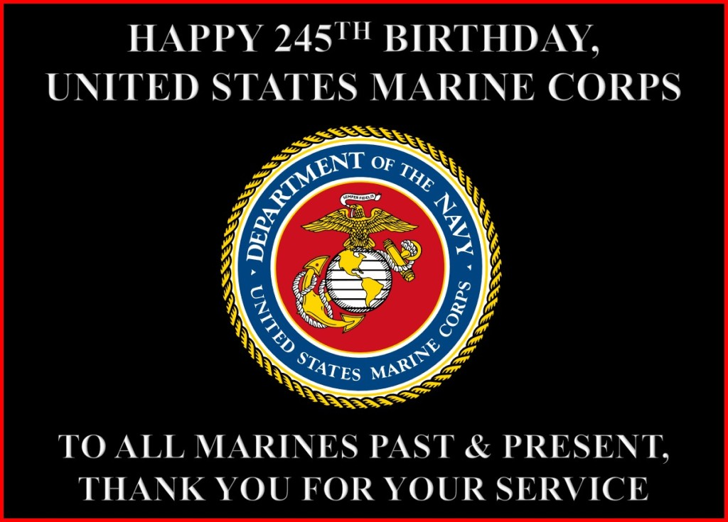 Happy 245th Birthday, United States Marine Corps! To all Marines past and present, thank you for your service.